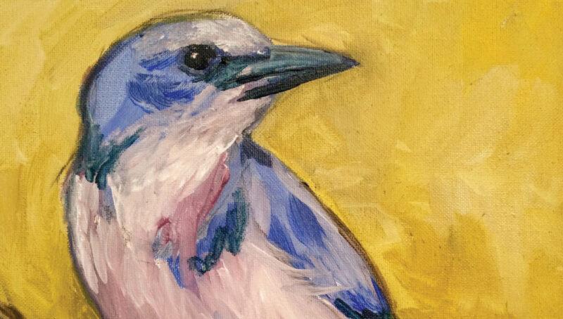 Pre[serve] poster image of bird